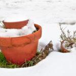 Terracotta-Töpfe im Schnee
