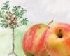 Bild Crony Apfel
