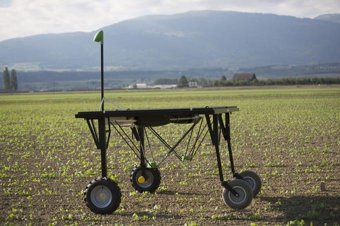 Ecorobotix auf Feld im Einsatz