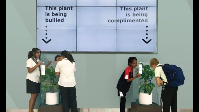 Experiment Ikea in UAE