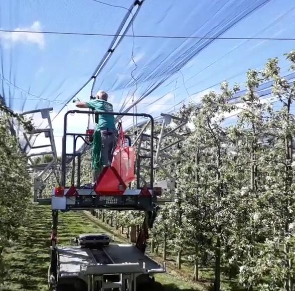 Obstbauern spannen Netze