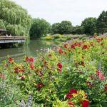 Botanischer Garten Chigago