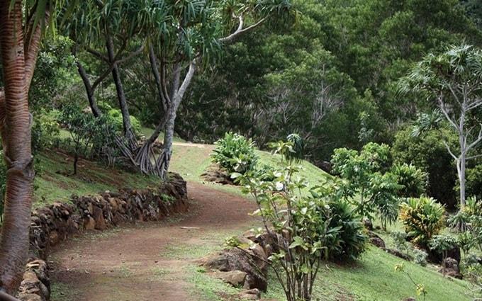 Limahuli Garden-min