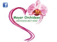logo_orchideen_meyer.jpg