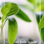 Titleblatt E-Book-Gartenerde