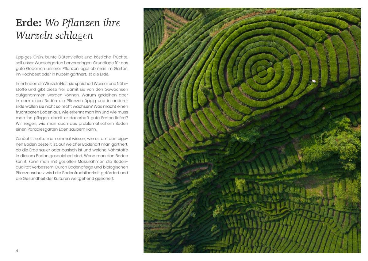 PDF über die Kiwi