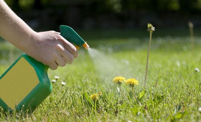 Herbizid aus Sprayflasche